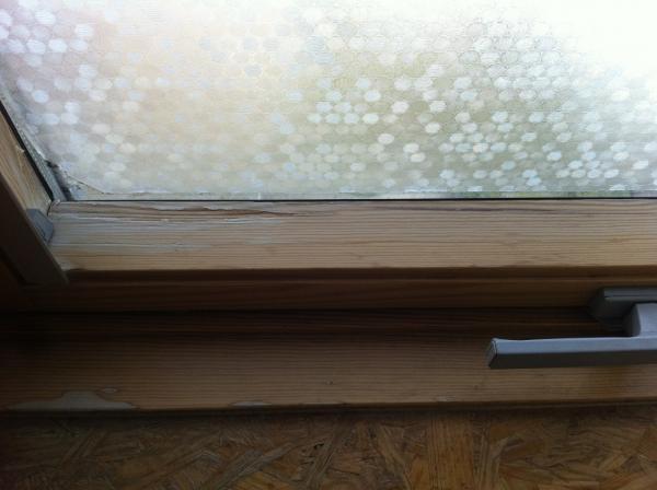 An die Holzprofis! Fenster streichen mit welcher Farbe? [Archiv ...